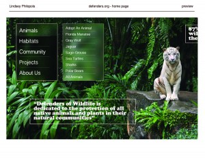 Website Redesign_Page_12